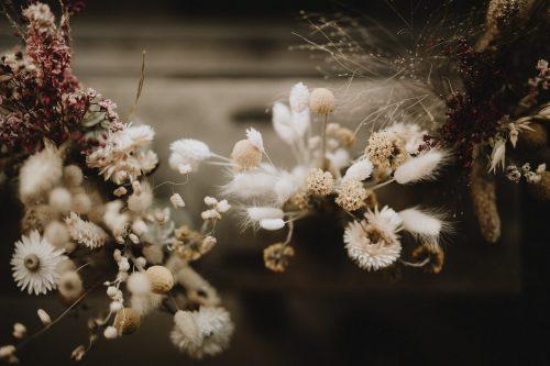 vitrine artisan fleuriste de sceaux par samantha guillon photographe